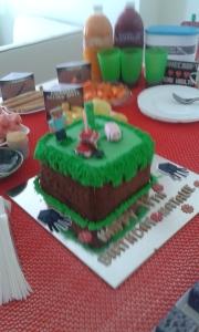 Her MineCraft cake!