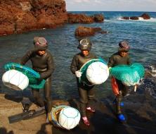 haenyu jeju island korea women divers 15