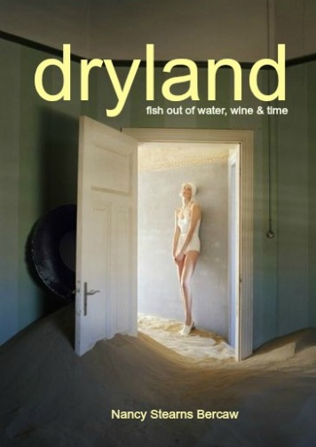 dryland3